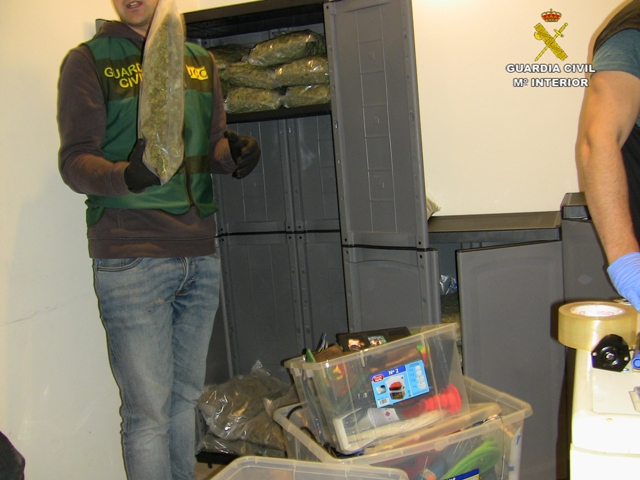 Desarticulada una importante red de cultivo y tráfico de marihuana que utilizaba como tapadera un club de cannabis de Barcelona