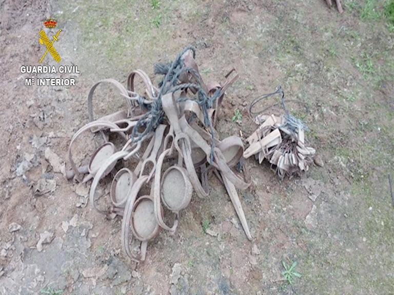 La Guardia Civil ha procedido a la detención e investigación de 16 personas por el uso ilegal de venenos para la caza