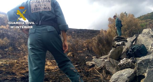 """La Guardia Civil detiene al supuesto autor del incendio forestal ocurrido en la comarca de """"La Cabrera"""" en agosto del 2017"""