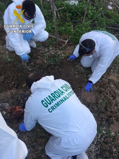 La Guardia Civil esclarece el homicidio de un irlandés desaparecido en Torrevieja (Alicante) el pasado mes de septiembre
