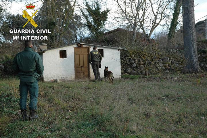 La Guardia Civil ha detenido e investigado a 21 personas por el uso ilegal de veneno en el medio natural