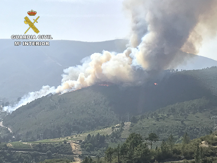 La Guardia Civil ha detenido a nueve personas por provocar 11 incendios en las provincias de Lugo, Ávila, Gran Canaria, León, Castellón y Cáceres