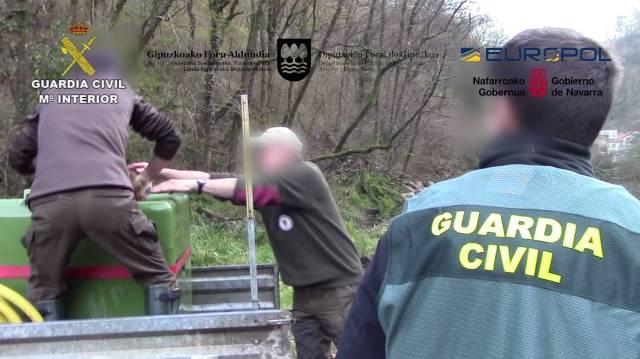 La Guardia Civil detiene e investiga a 16 personas dedicadas al tráfico ilegal de angula europea