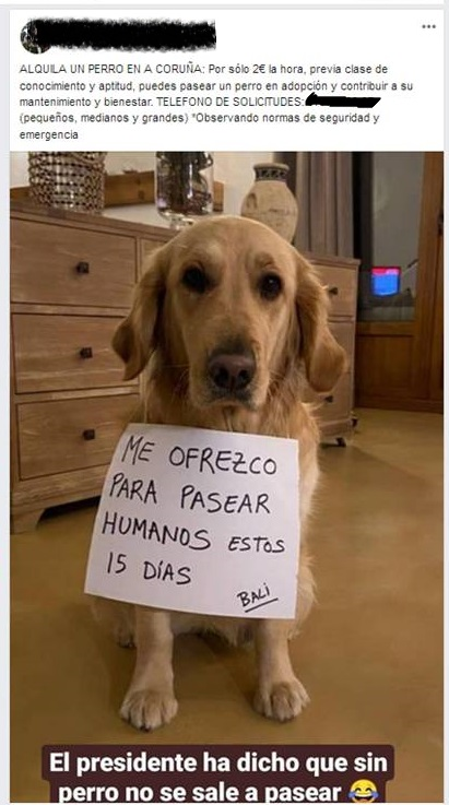 La Guardia Civil localiza a un hombre que alquilaba a sus perros para sacarlos a pasear durante el Estado de Alarma