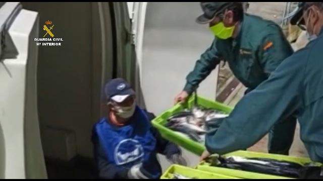 La Guardia Civil entrega al banco de alimentos de Cantabria más 500 kilos de pescado intervenido