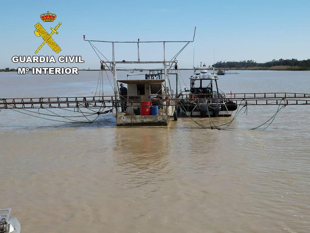 La Guardia Civil actúa contra las plataformas anguleras ilegales en el río Guadalquivir