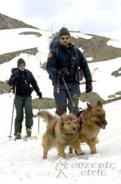 Funciones de la Guardia Civil, En la montaña